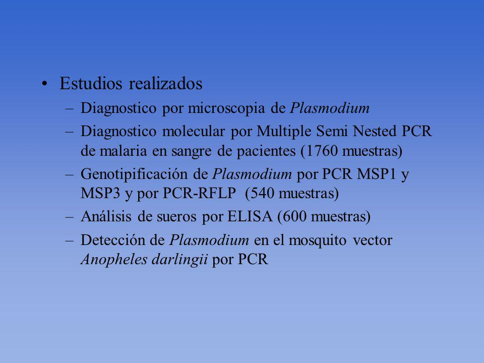 Personas involucradas por el UAB –Dra. OraLee Branch (Investigador principal) Personas involucradas por el IMTAvH Campo: –Dr. Martin Casapia (coordina