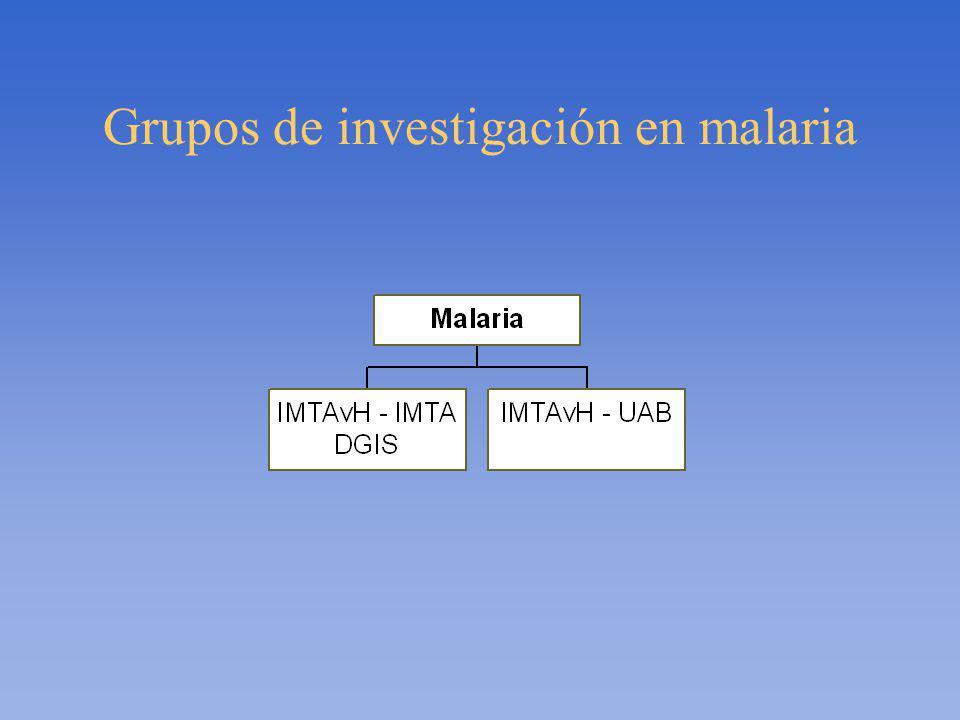 Grupos de investigación en malaria