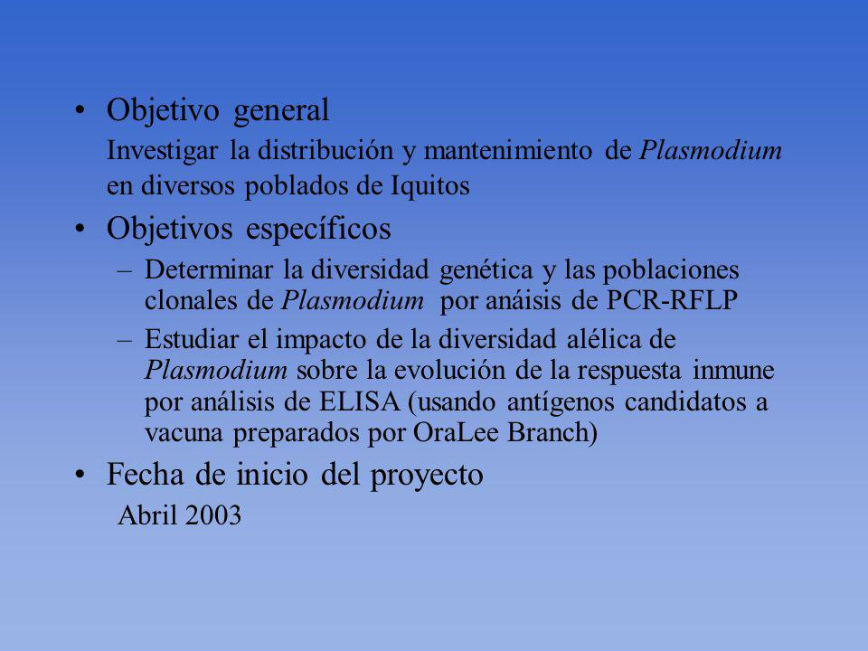 Objetivo general Investigar la distribución y mantenimiento de Plasmodium en diversos poblados de Iquitos Objetivos específicos –Determinar la diversidad genética y las poblaciones clonales de Plasmodium por anáisis de PCR-RFLP –Estudiar el impacto de la diversidad alélica de Plasmodium sobre la evolución de la respuesta inmune por análisis de ELISA (usando antígenos candidatos a vacuna preparados por OraLee Branch) Fecha de inicio del proyecto Abril 2003