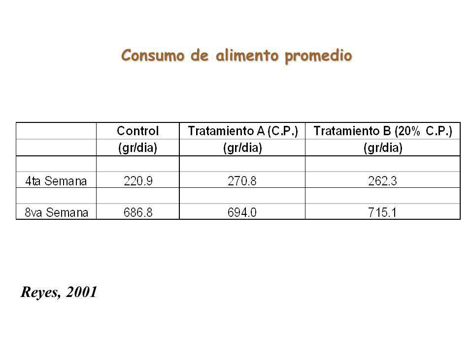Consumo de alimento promedio Reyes, 2001