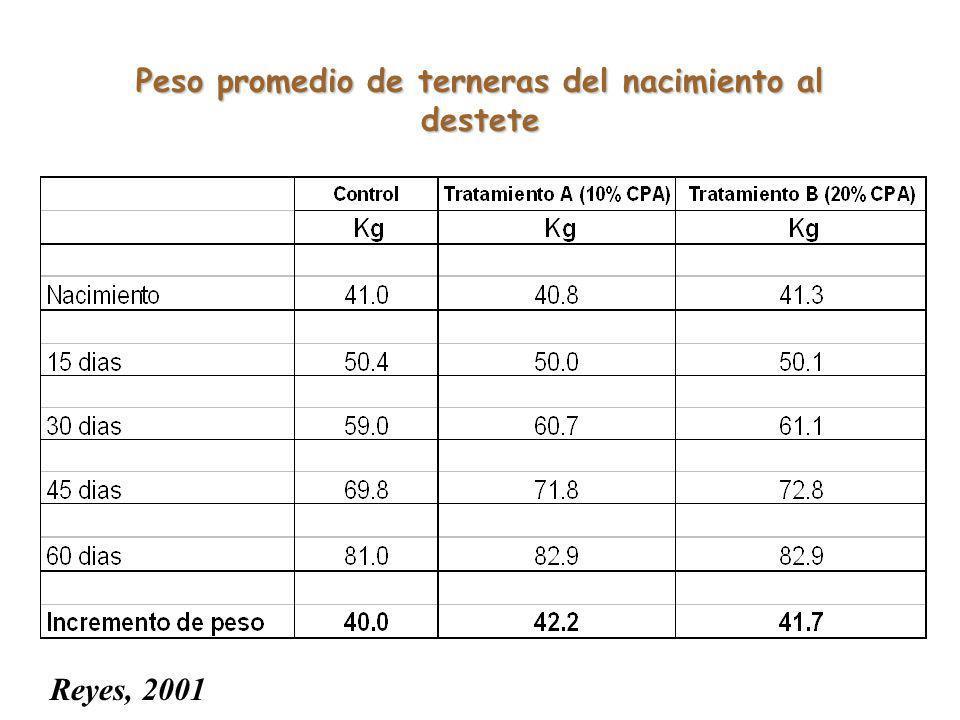 Peso promedio de terneras del nacimiento al destete Reyes, 2001