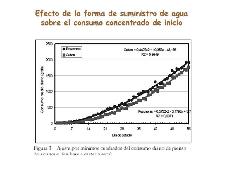Efecto de la forma de suministro de agua sobre el consumo concentrado de inicio