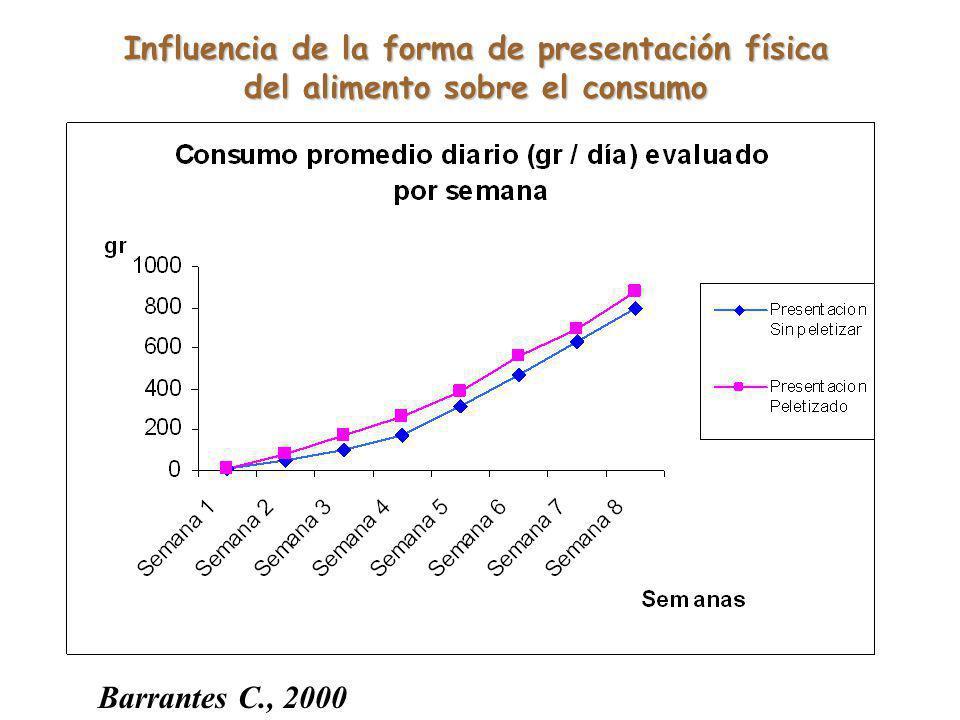 Influencia de la forma de presentación física del alimento sobre el consumo Barrantes C., 2000