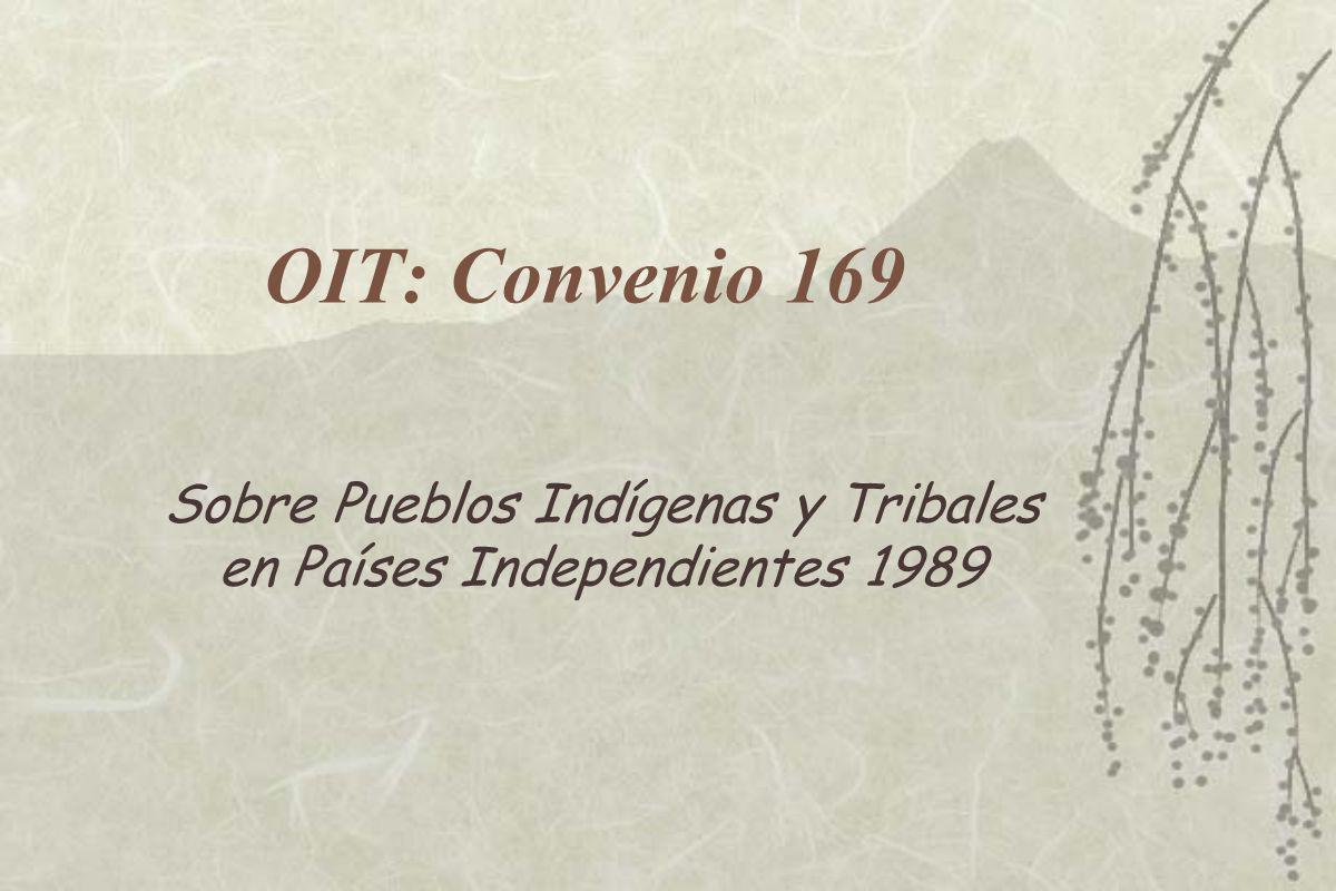 OIT: Convenio 169 Sobre Pueblos Indígenas y Tribales en Países Independientes 1989