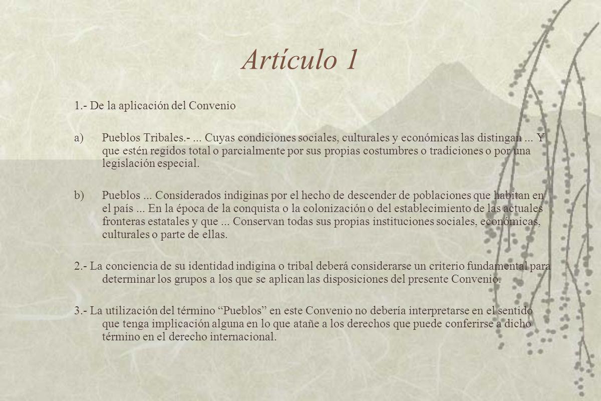 Artículo 1 1.- De la aplicación del Convenio a)Pueblos Tribales.-...