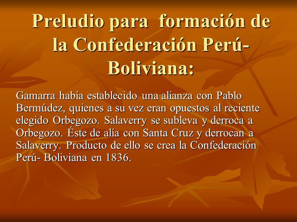 Gamarra había establecido una alianza con Pablo Bermúdez, quienes a su vez eran opuestos al reciente elegido Orbegozo.