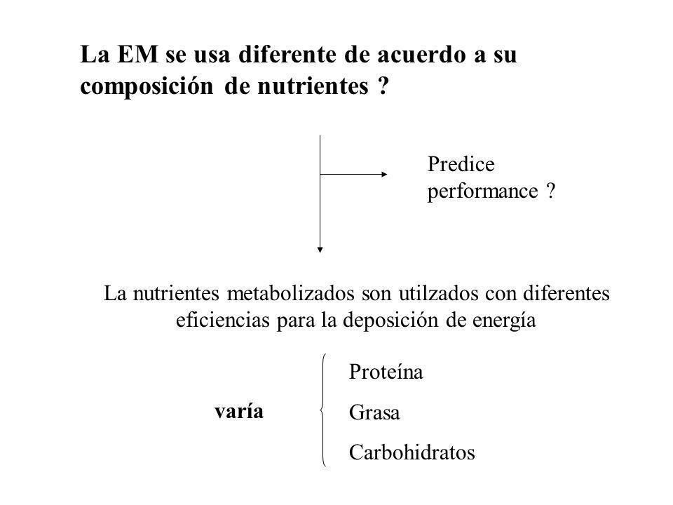 DETERMINACIÓN DE EN * Dos planos de alimentación Alimentación adlibitum Alimentación restringida (90, 80, 70,60 % adlibitum) * Se observa la ganancia de peso (coposición corporal- energía retenida) 9.35 cal /g grasa 5.66 cal/g proteína