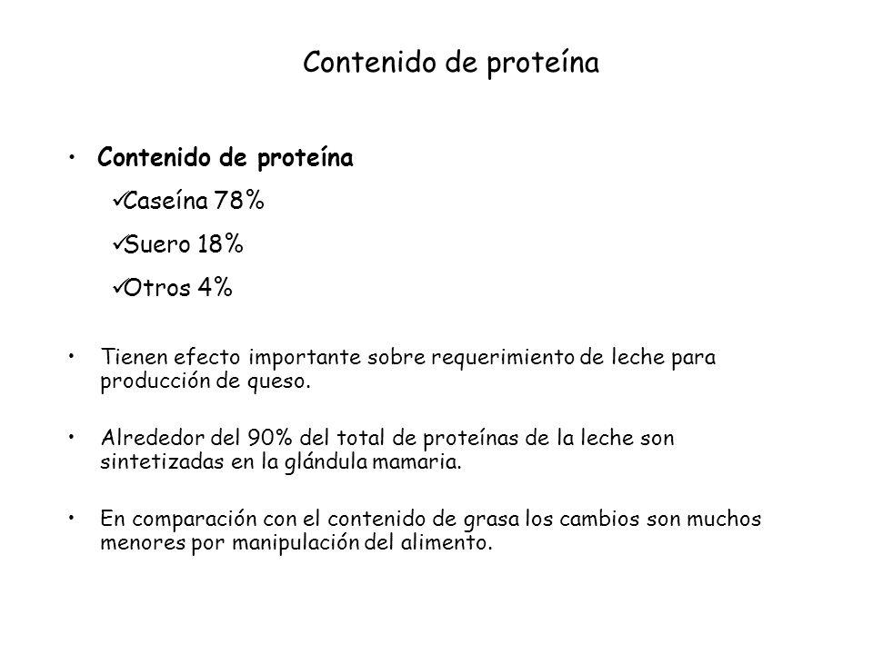 Un alimento en el consumo de energía afecta la concentración de proteína láctea.