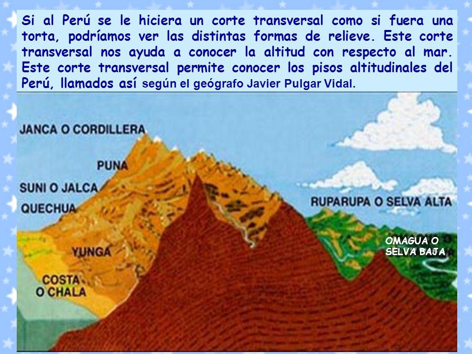 Si al Perú se le hiciera un corte transversal como si fuera una torta, podríamos ver las distintas formas de relieve. Este corte transversal nos ayuda