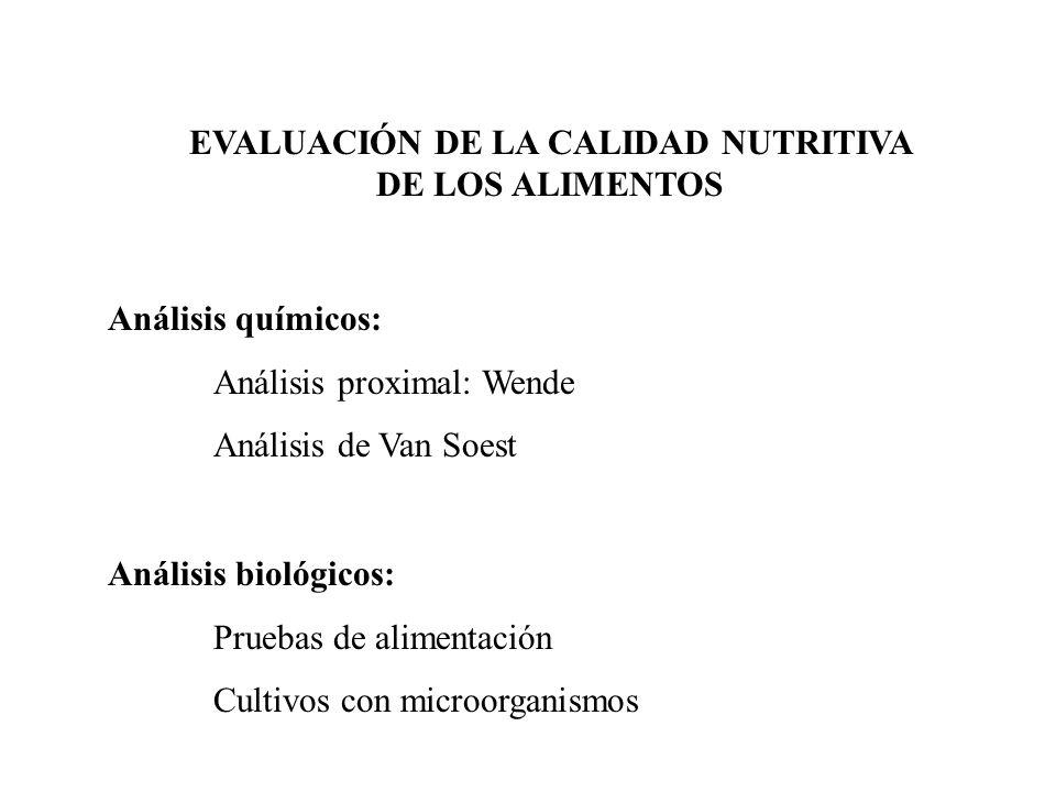 EVALUACIÓN DE LA CALIDAD NUTRITIVA DE LOS ALIMENTOS Análisis químicos: Análisis proximal: Wende Análisis de Van Soest Análisis biológicos: Pruebas de