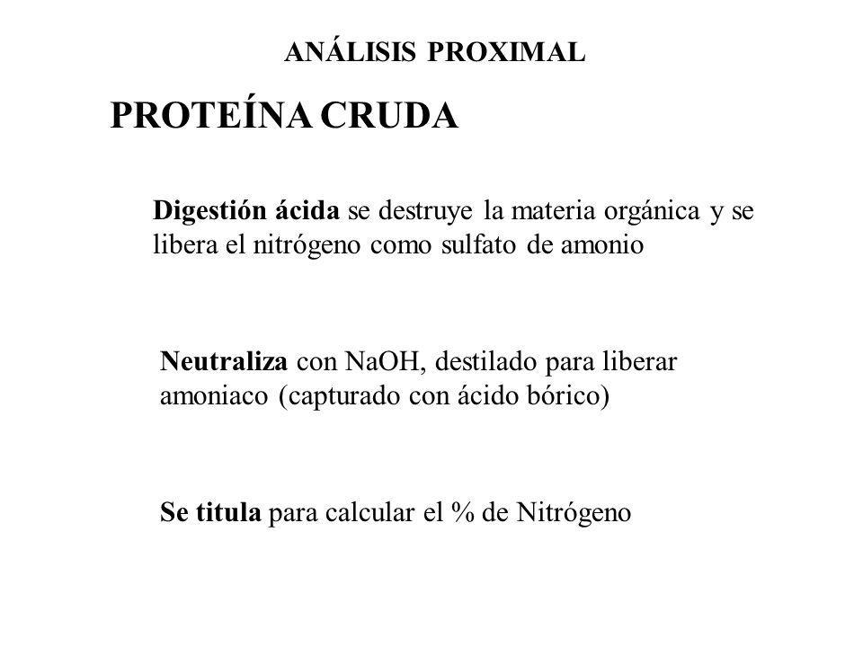 PROTEÍNA CRUDA Digestión ácida se destruye la materia orgánica y se libera el nitrógeno como sulfato de amonio Neutraliza con NaOH, destilado para lib