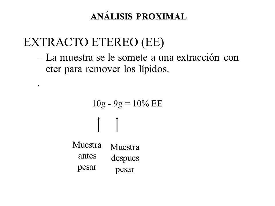 EXTRACTO ETEREO (EE) –La muestra se le somete a una extracción con eter para remover los lípidos.. 10g - 9g = 10% EE Muestra antes pesar Muestra despu