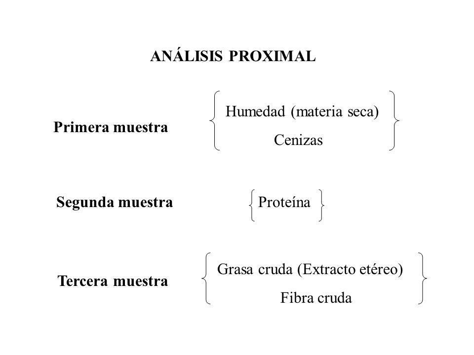 ANÁLISIS PROXIMAL Humedad (materia seca) Cenizas Primera muestra ProteínaSegunda muestra Grasa cruda (Extracto etéreo) Fibra cruda Tercera muestra