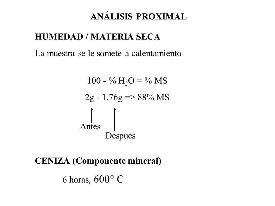 PROTEÍNA CRUDA Digestión ácida se destruye la materia orgánica y se libera el nitrógeno como sulfato de amonio Neutraliza con NaOH, destilado para liberar amoniaco (capturado con ácido bórico) Se titula para calcular el % de Nitrógeno ANÁLISIS PROXIMAL
