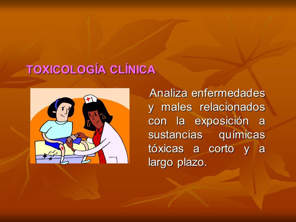 Analiza enfermedades y males relacionados con la exposición a sustancias químicas tóxicas a corto y a largo plazo. Analiza enfermedades y males relaci