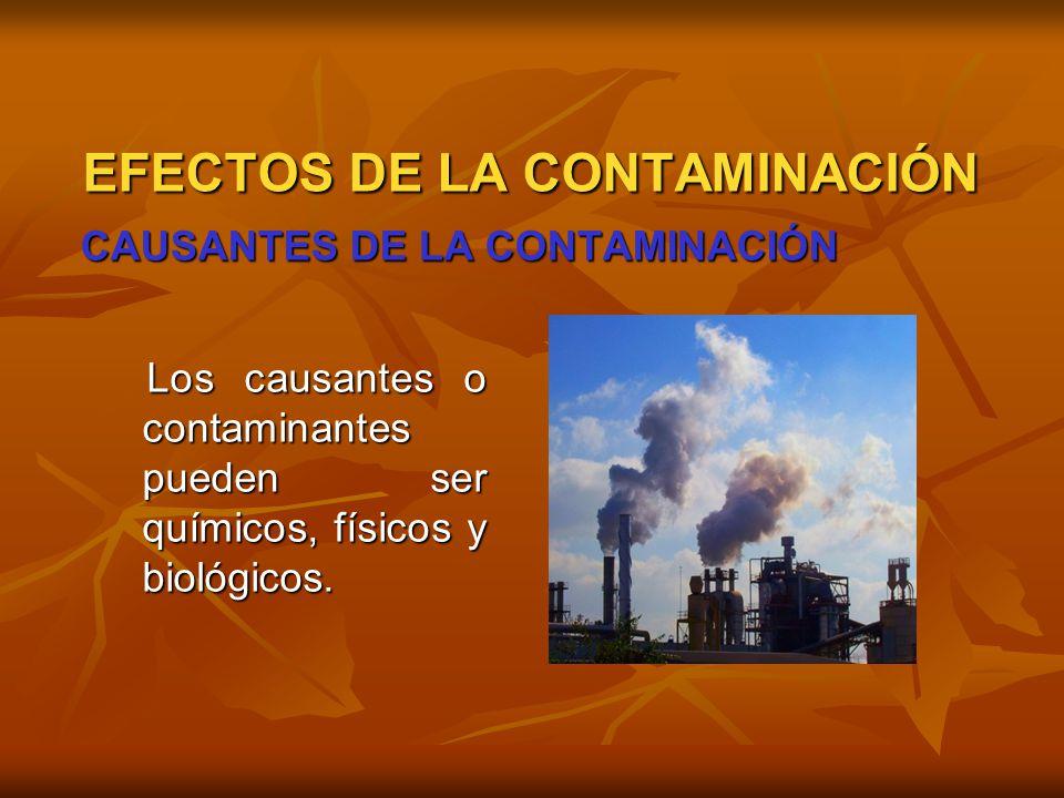 EFECTOS DE LA CONTAMINACIÓN CAUSANTES DE LA CONTAMINACIÓN Los causantes o contaminantes pueden ser químicos, físicos y biológicos. Los causantes o con