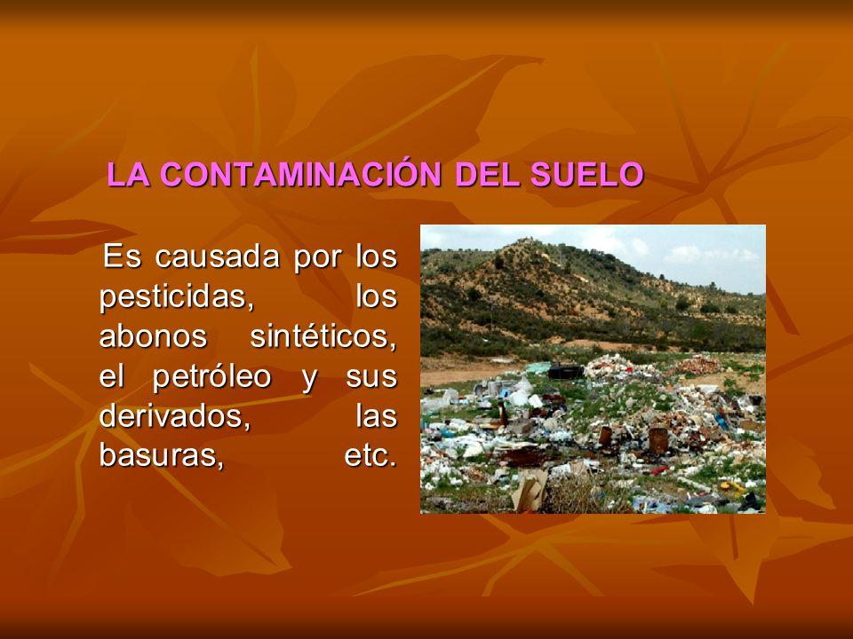 LA CONTAMINACIÓN DEL SUELO Es causada por los pesticidas, los abonos sintéticos, el petróleo y sus derivados, las basuras, etc. Es causada por los pes