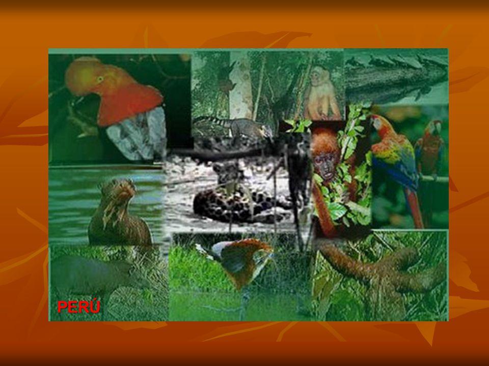 CONTAMINACIÓN La introducción al medio ambiente de elementos nocivos a la vida, la flora o la fauna, que degraden o disminuyan la calidad de la atmósfera, del agua, del suelo o de los bienes y recursos naturales en general.