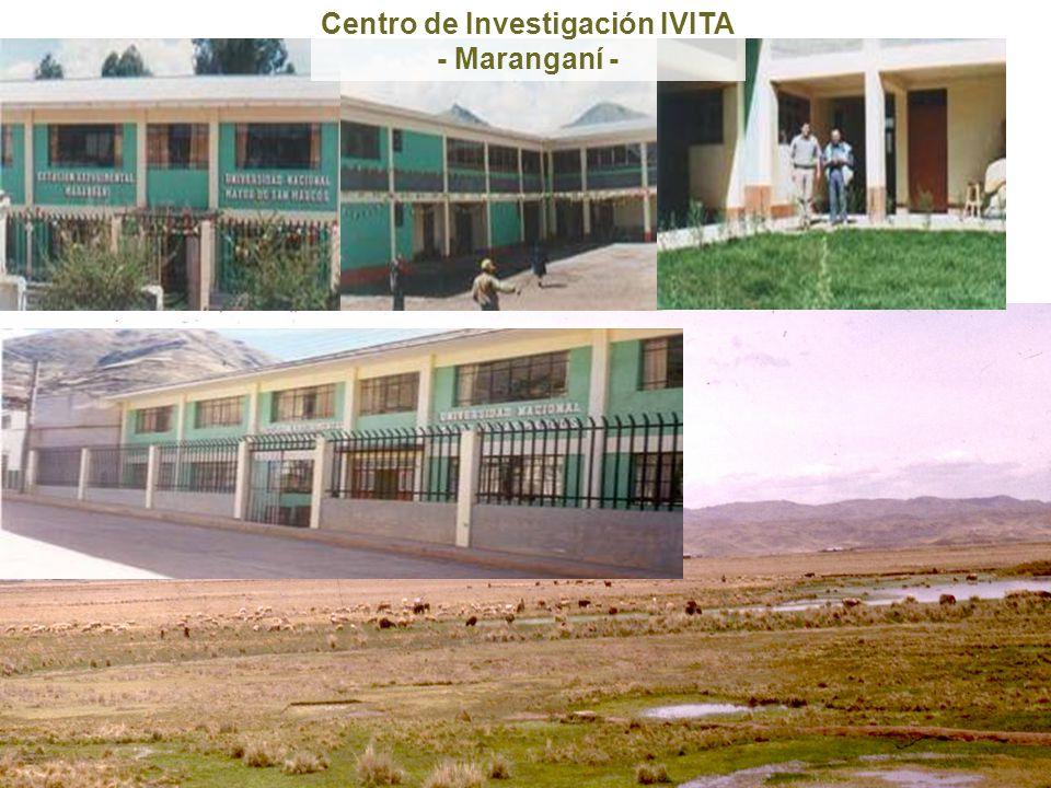 Centro de Investigación IVITA - Maranganí -