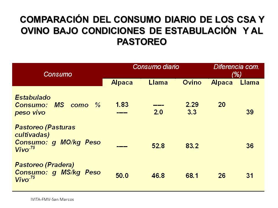 IVITA-FMV-San Marcos COMPARACIÓN DEL CONSUMO DIARIO DE LOS CSA Y OVINO BAJO CONDICIONES DE ESTABULACIÓN Y AL PASTOREO