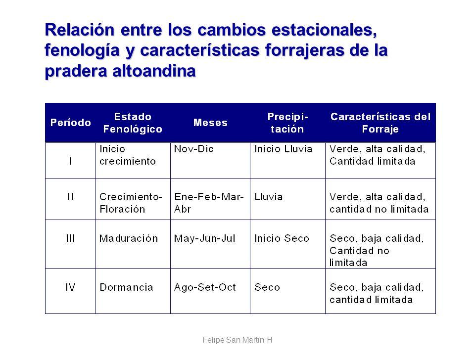 Relación entre los cambios estacionales, fenología y características forrajeras de la pradera altoandina Felipe San Martín H
