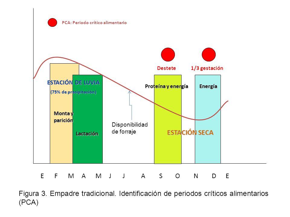 EFMAMJJASONDE Destete1/3 gestación Lactación Monta y parición PCA: Periodo crítico alimentario ESTACIÓN DE LUVIA (75% de precipitación) ESTACIÓN SECA Proteína y energía Energía Figura 3.