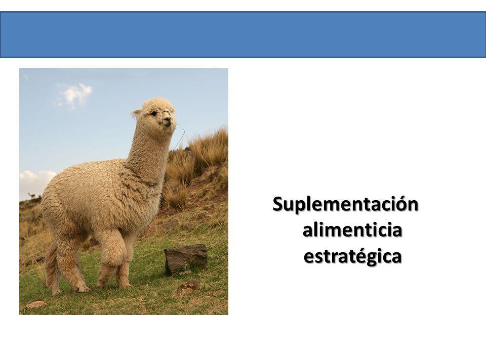 Suplementación alimenticia estratégica