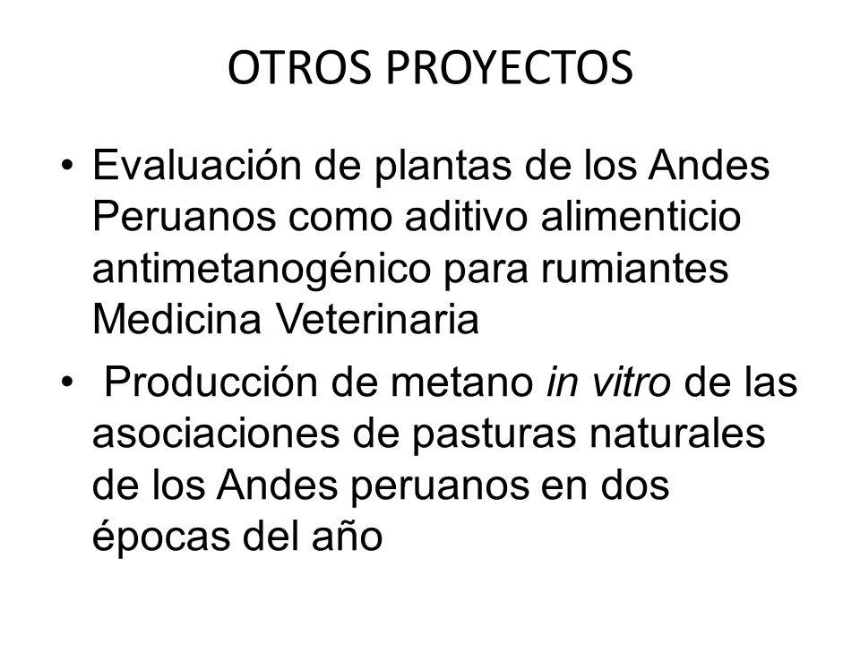 OTROS PROYECTOS Evaluación de plantas de los Andes Peruanos como aditivo alimenticio antimetanogénico para rumiantes Medicina Veterinaria Producción de metano in vitro de las asociaciones de pasturas naturales de los Andes peruanos en dos épocas del año