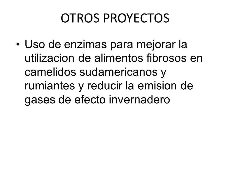 OTROS PROYECTOS Uso de enzimas para mejorar la utilizacion de alimentos fibrosos en camelidos sudamericanos y rumiantes y reducir la emision de gases de efecto invernadero