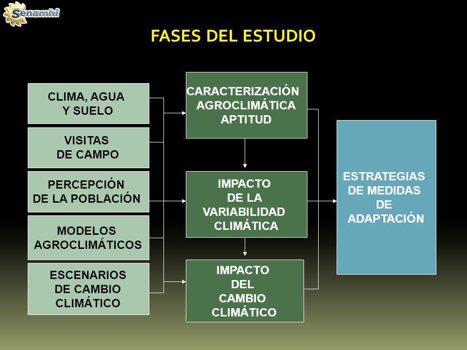 CLIMA, AGUA Y SUELO VISITAS DE CAMPO PERCEPCIÓN DE LA POBLACIÓN MODELOS AGROCLIMÁTICOS ESCENARIOS DE CAMBIO CLIMÁTICO CARACTERIZACIÓN AGROCLIMÁTICA AP