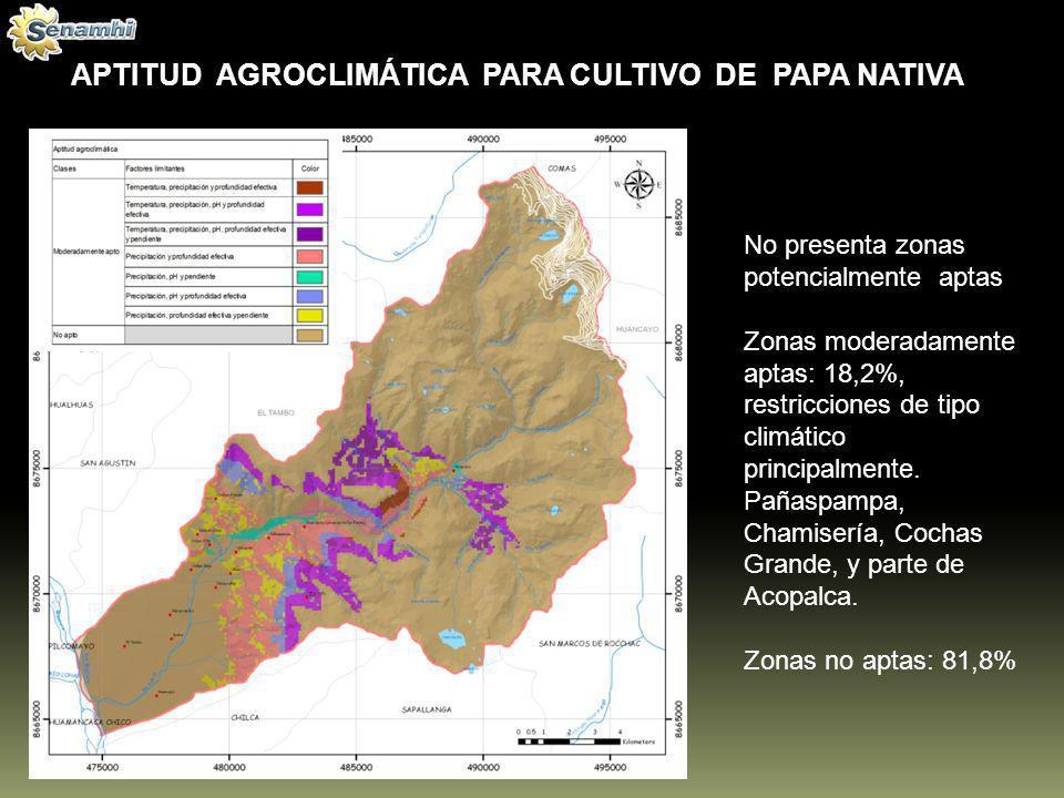 APTITUD AGROCLIMÁTICA PARA CULTIVO DE PAPA NATIVA No presenta zonas potencialmente aptas Zonas moderadamente aptas: 18,2%, restricciones de tipo climá