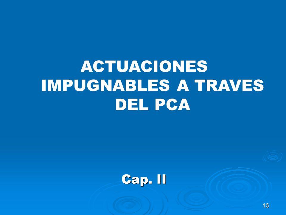 13 ACTUACIONES IMPUGNABLES A TRAVES DEL PCA Cap. II