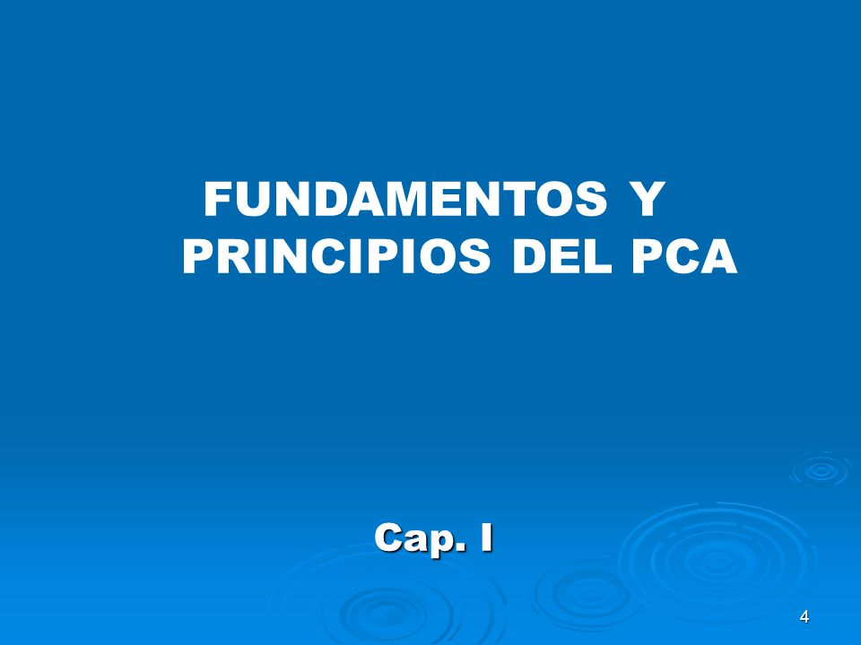 4 FUNDAMENTOS Y PRINCIPIOS DEL PCA Cap. I