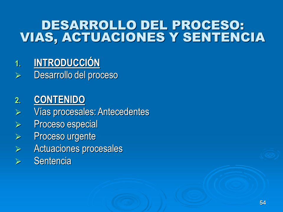 54 DESARROLLO DEL PROCESO: VIAS, ACTUACIONES Y SENTENCIA 1. INTRODUCCIÓN Desarrollo del proceso Desarrollo del proceso 2. CONTENIDO Vías procesales: A
