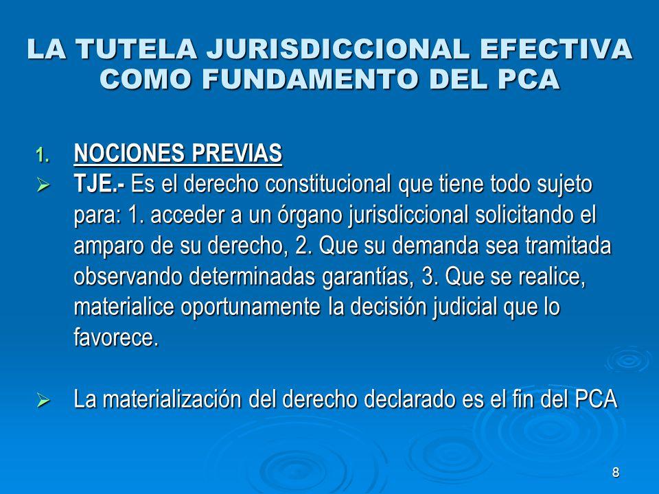 9 LA TUTELA JURISDICCIONAL EFECTIVA COMO FUNDAMENTO DEL PCA 1.