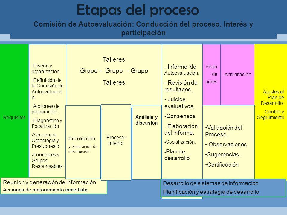 Etapas del proceso Comisión de Autoevaluación: Conducción del proceso.
