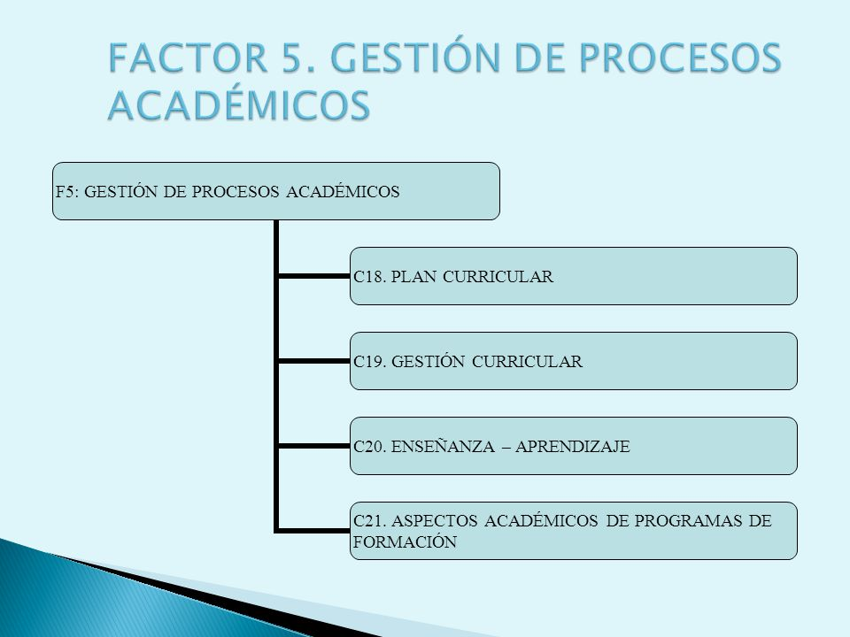 F5: GESTIÓN DE PROCESOS ACADÉMICOS C18. PLAN CURRICULAR C19. GESTIÓN CURRICULAR C20. ENSEÑANZA – APRENDIZAJE C21. ASPECTOS ACADÉMICOS DE PROGRAMAS DE