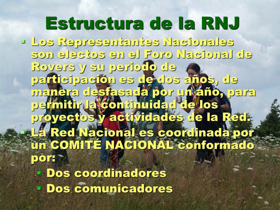 Estructura de la RNJ Los Representantes Nacionales son electos en el Foro Nacional de Rovers y su periodo de participación es de dos años, de manera desfasada por un año, para permitir la continuidad de los proyectos y actividades de la Red.