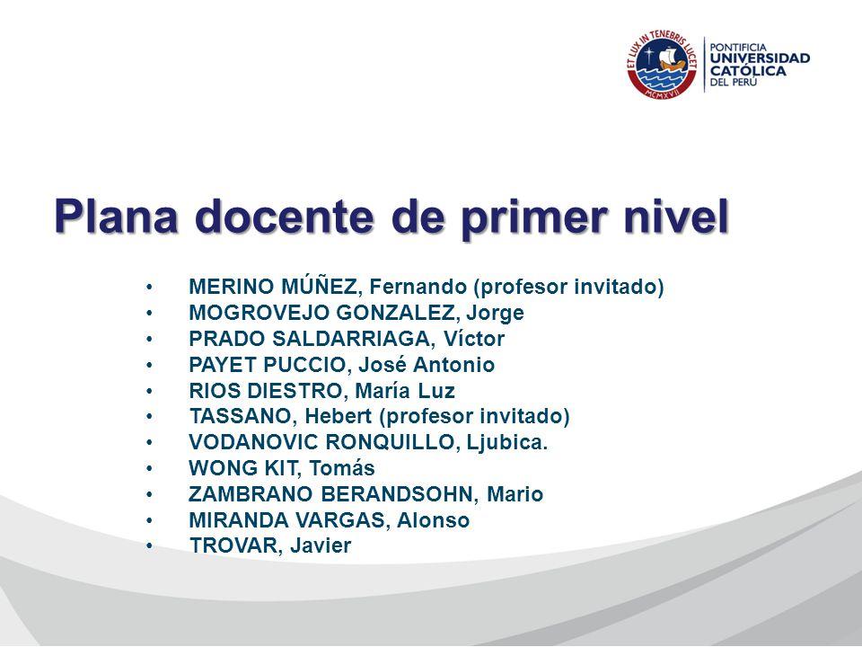 MERINO MÚÑEZ, Fernando (profesor invitado) MOGROVEJO GONZALEZ, Jorge PRADO SALDARRIAGA, Víctor PAYET PUCCIO, José Antonio RIOS DIESTRO, María Luz TASS