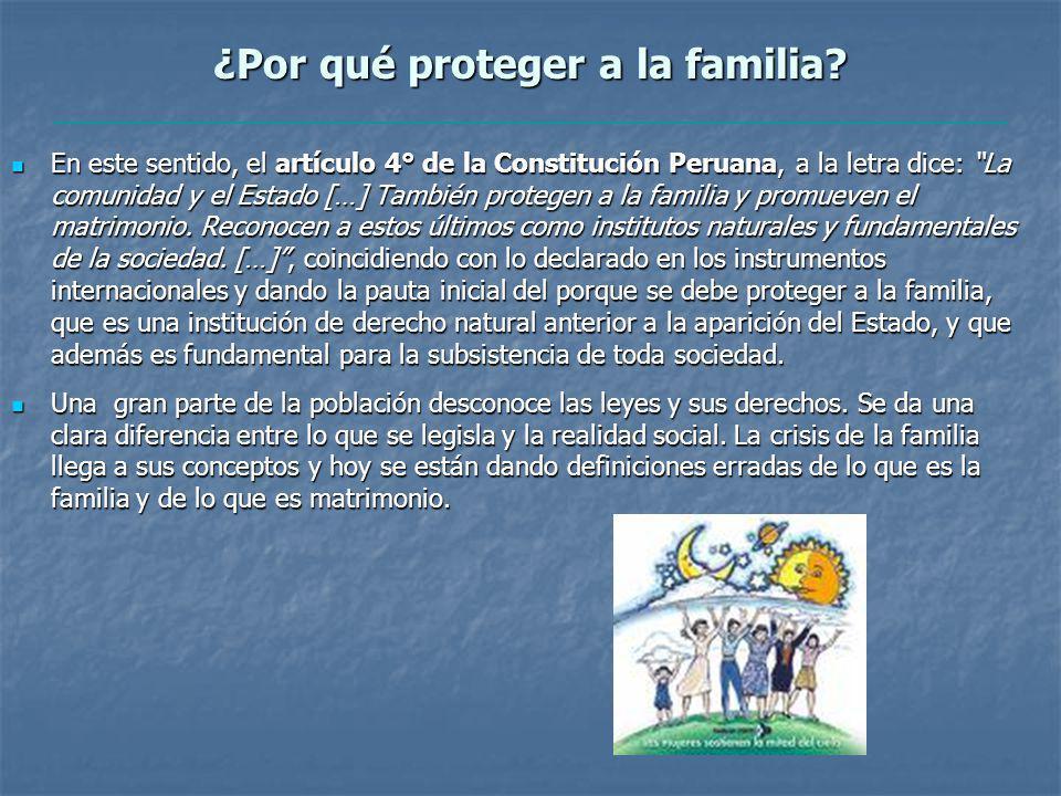 ¿Por qué proteger a la familia.