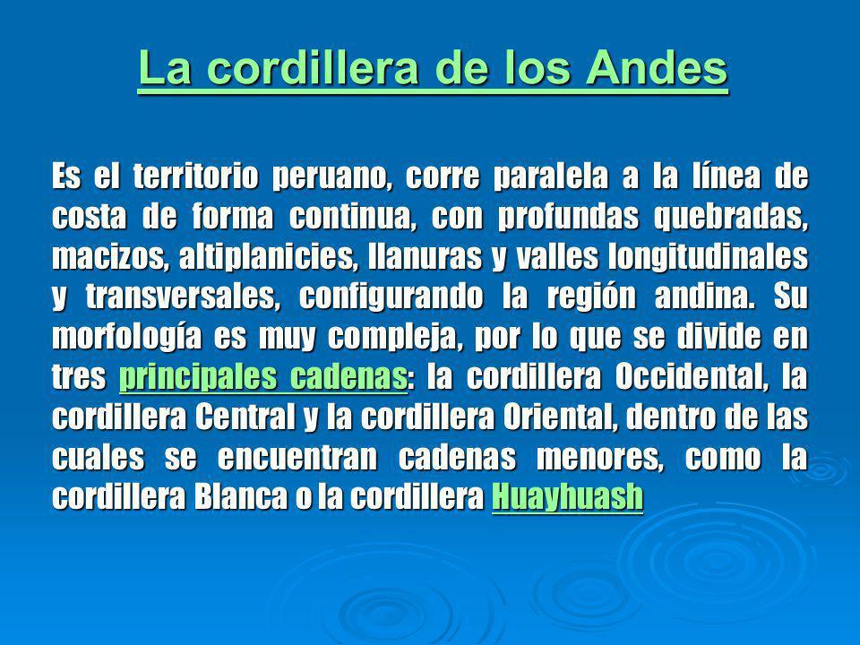 La cordillera de los Andes La cordillera de los Andes Es el territorio peruano, corre paralela a la línea de costa de forma continua, con profundas quebradas, macizos, altiplanicies, llanuras y valles longitudinales y transversales, configurando la región andina.