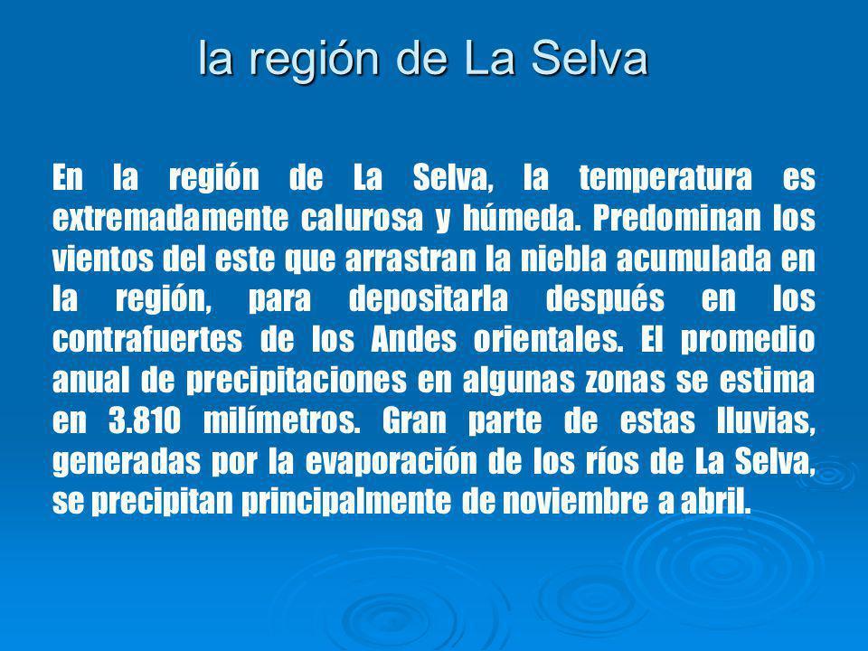 la región de La Selva En la región de La Selva, la temperatura es extremadamente calurosa y húmeda.