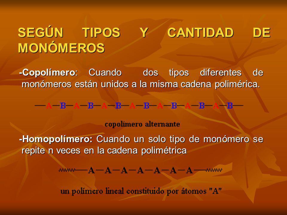 SEGÚN TIPOS Y CANTIDAD DE MONÓMEROS -Copolímero: Cuando dos tipos diferentes de monómeros están unidos a la misma cadena polimérica. -Copolímero: Cuan