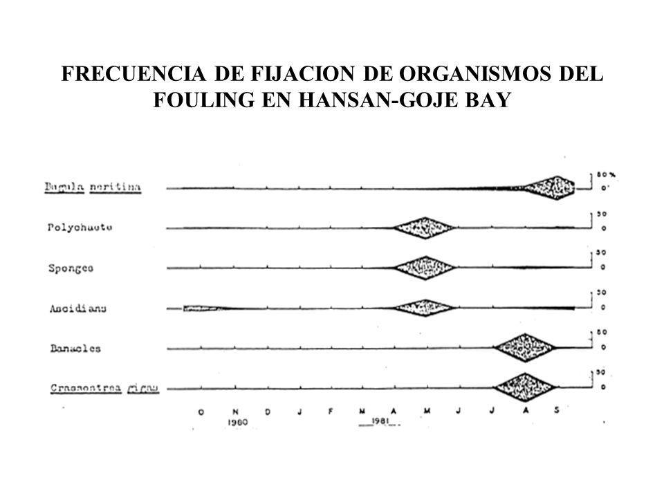 FRECUENCIA DE FIJACION DE ORGANISMOS DEL FOULING EN HANSAN-GOJE BAY