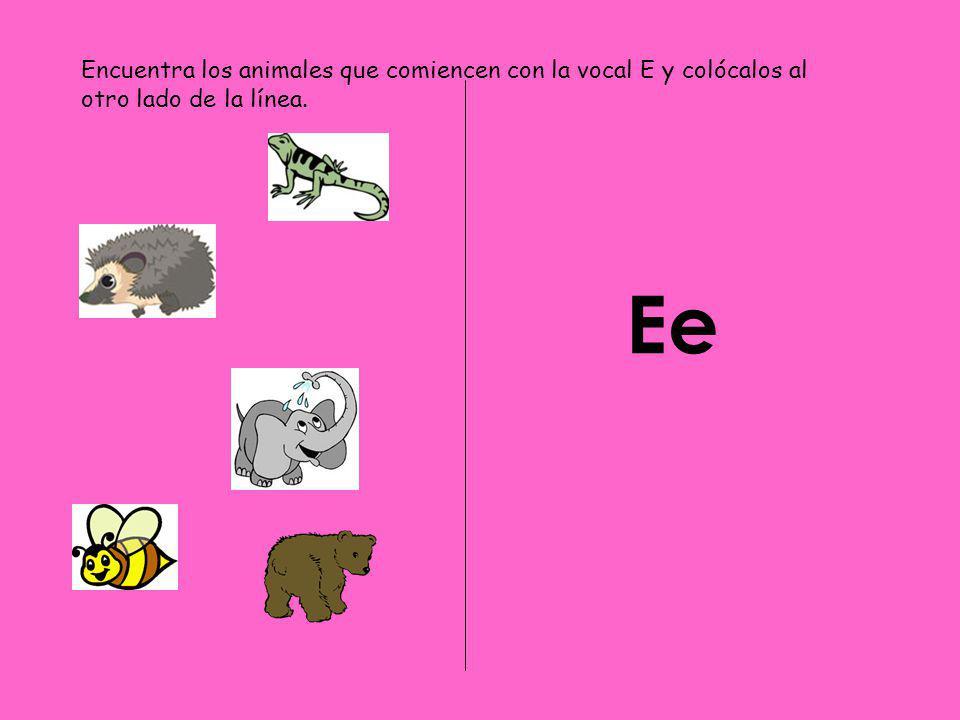 Ee Encuentra los animales que comiencen con la vocal E y colócalos al otro lado de la línea.
