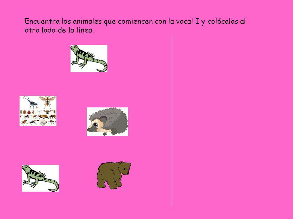 Encuentra los animales que comiencen con la vocal I y colócalos al otro lado de la línea.
