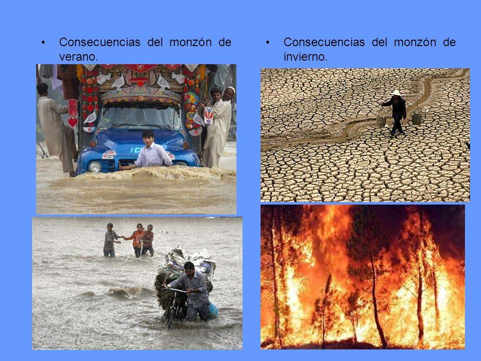 Consecuencias del monzón de verano. Consecuencias del monzón de invierno.