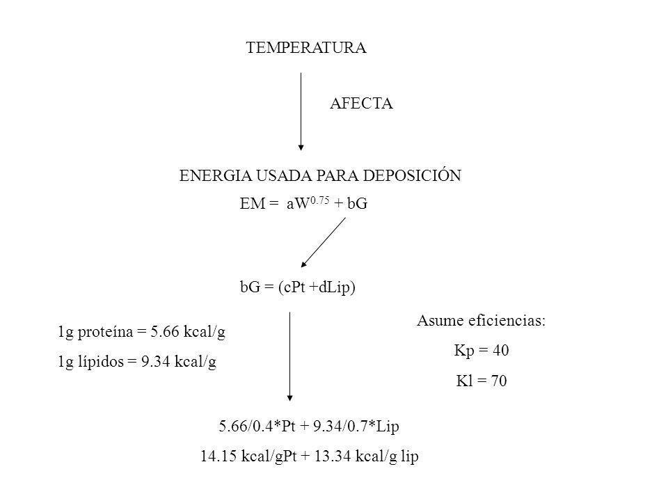 AFECTA EM = aW 0.75 + bG TEMPERATURA ENERGIA USADA PARA DEPOSICIÓN bG = (cPt +dLip) 1g proteína = 5.66 kcal/g 1g lípidos = 9.34 kcal/g Asume eficienci