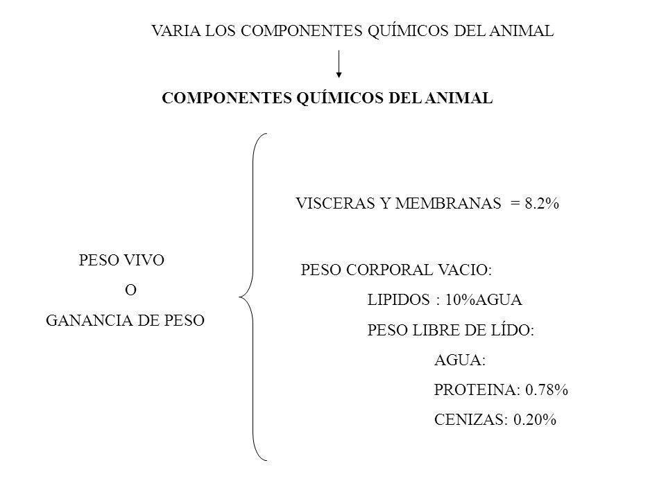 COMPONENTES QUÍMICOS DEL ANIMAL PESO VIVO O GANANCIA DE PESO VISCERAS Y MEMBRANAS = 8.2% PESO CORPORAL VACIO: LIPIDOS : 10%AGUA PESO LIBRE DE LÍDO: AGUA: PROTEINA: 0.78% CENIZAS: 0.20% VARIA LOS COMPONENTES QUÍMICOS DEL ANIMAL
