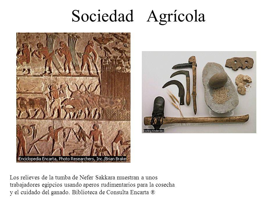 Sociedad Agrícola Los relieves de la tumba de Nefer Sakkara muestran a unos trabajadores egipcios usando aperos rudimentarios para la cosecha y el cui